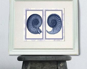 Nautilus Shells in Indigo Blue art print Sea shell decor seashell art print sea shell print Nautical print coastal bathroom decor Beach Art