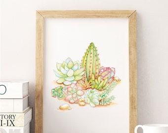 Succulent Print, Watercolor Succulent Print, Cactus Garden Painting, Botanical Print