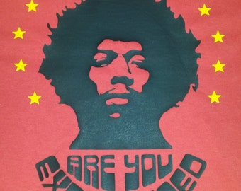 Jimi Hendrix Are You Experienced Printed T-shirt Top Album 60s 70s Vintage Style Tour Rock