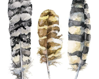 "Feather Painting - Print from Original Watercolor Painting, ""Owl Feathers"", Bird Feathers, Feather Print, Owl"