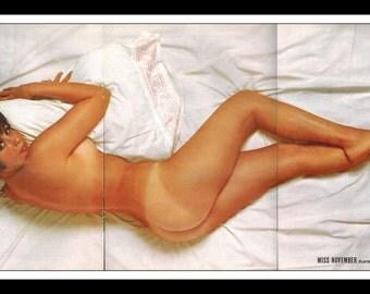 "Mature Playboy November 1964 : Playmate Centerfold Kai Brendlinger 3 Page Spread Photo Wall Art Decor 11"" x 23"""