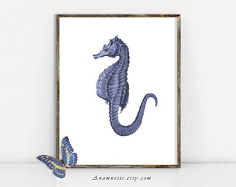 Seahorse Art Print - SEAHORSE 02 IN BLUE - Instant Download Image - printable antique ocean illustration for prints, crafts, totes, t-shirts