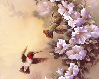 Humming Birds and Morning Glories  Archival Print of Watercolor Painting