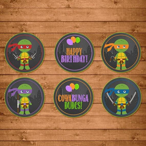 Teenage Mutant Ninja Turtles Cupcake Toppers Chalkboard Illustrations -- TMNT Toppers -- Ninja Turtles Birthday -- TMNT Party Favors