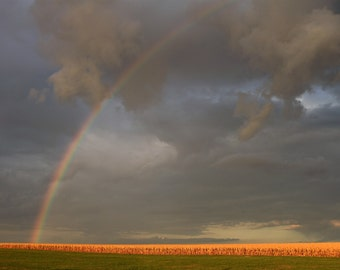 Rainbow, photo, print, country, corn, feild, weather, clouds, wall art, home decor, free shipping