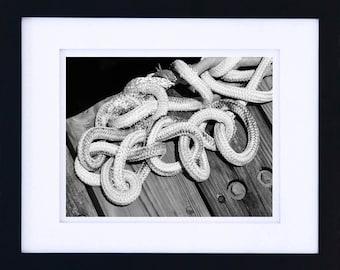Marine knot, black and white