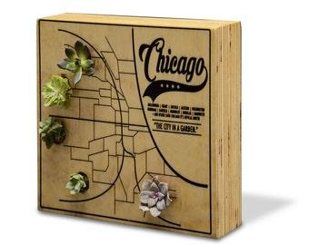City Gardens: Chicago - Succulent Planter Garden - Vertical Planter  - Succulent Wall Planter
