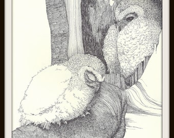 Two Baby Owls in Tree Book Print (1972), Barred Owl, Frameable Wall Art, Black White Ink Drawing, Bird Watcher Gift, Nature Home Decor