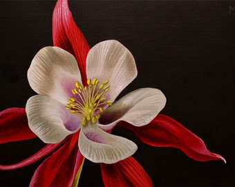 Columbine, original acrylic flower painting