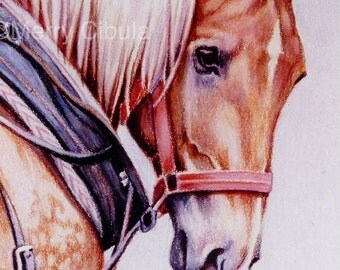 """Eqine Art. An original equine art colored pencil drawing, entitled """"To Work Now"""""""