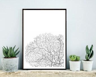 Printable Art, Coral Print, Coral Art, Scandinavian Print, Wall Decor, Grey and White Art, Instant download, Home Decor, Art Digital Print