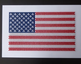 3D American Flag Wall Art Handcrafted With 1661 Red and White Push-Pins.