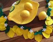 Lemon, Lemonade Stand, Lemonade, Lemon Garland, Lemons, Garland, Banner, Bunting, Felt, Photo prop, Kitchen Decoration, Kitchen