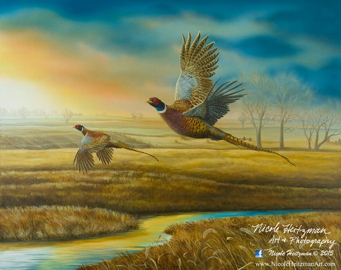 Christmas Gift for Dad Pheasant Art Pheasant Print Wildlife Art Pheasant Creek Painting Canvas Print by Nicole Heitzman