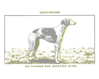 Dog Print - Greyhound (grey and lime, small)