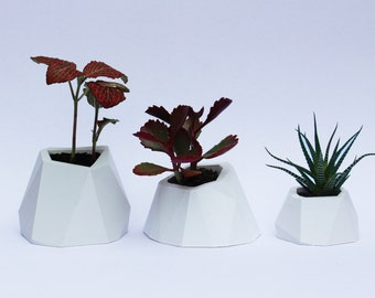 3D Printed Faceted Planter Family
