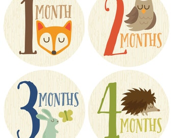 GIFT OFFER, Monthly Baby Sticker Boy, Baby Month Sticker, Woodland, Milestone Sticker, Month by Month Baby Sticker, Baby Gift, Baby Boy