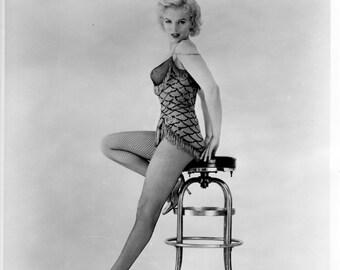 Marilyn Monroe Fishnet Stockings Pinup Girl Poster Art Photo 11x14