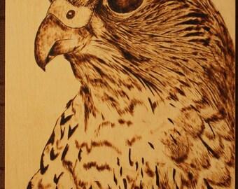 Hawk. Pyrography art. Wood burning.