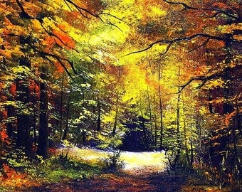 Original oil paintings Forest in autumn