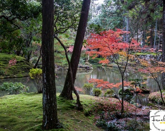 "Moss Garden - ""Kokedera"" Fine Art Photograph (9.5"" x 13.25"" Print on 20"" x 24"" Board)"