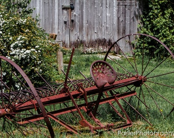 Photography - Forgotten plow