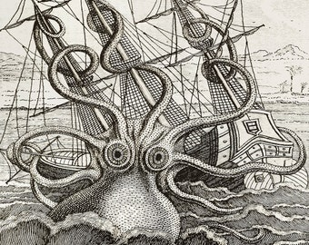 Custom Printed Wallpaper of drawing of Giant Octopus - printed to your wall size