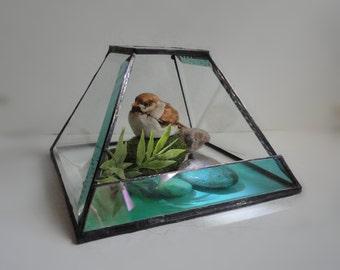 Glass Terrarium, Modern, Recycled Beveled Glass, Planter, Home Decor, Garden, Diorama, Container, Atrium, Conservatory, Greenhouse, Display