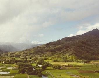 Hanalei Valley Kauai, Hawaii Art Print, Mountain Photography, Landscape, Hawaiian Decor, Mountain Print, Travel Photo - The Valley
