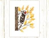 Downy Woodpecker Print -- bird art -- yellow bird art 52 birds stephanie fizer coleman illustration