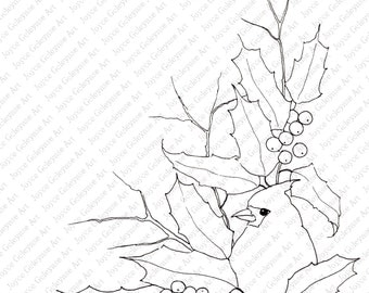 Coloring for Adults, Printable Art to Color, Christmas Bird and Holly, Holiday Stamp Art, Plus PDF File: TIPS for Coloring, Instant Download
