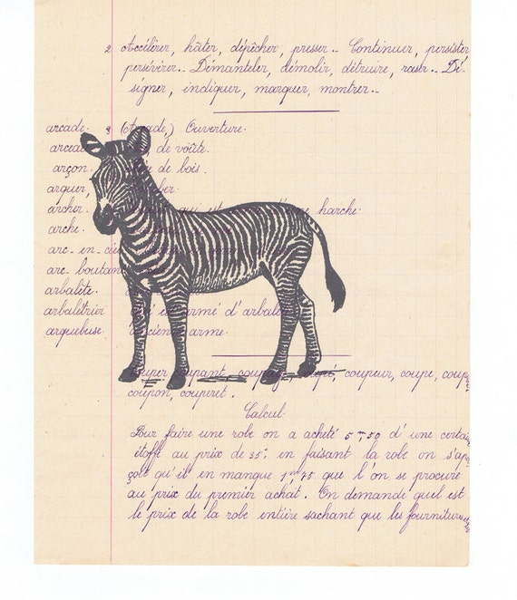 Zebra art print lligraphy stripes original handwritten paper
