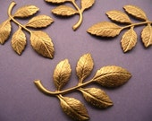 6 Brass Leaf and Branch Findings