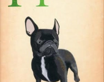 Dogs A-Z: French Bulldog