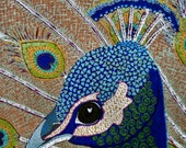 Krelly Designs,Peacock, peacock feathers, peacock face, peacock card,peacock art, peacock print, painted peacock