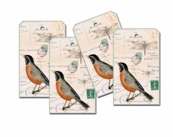 Robin Gift Tag, Dragonfly Gift Tag, Nature Gift Tag, Bird Gift Tag, Postcard Gift Tag, Gift Wrap Tag, Spring Tag, Robin Bookmark, Woodland