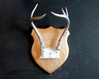 Rustic Modern Minimalist Silver Antlers on Metallic Gold Wood Shield Mount, Handmade