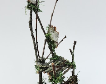 Primitive Twig Chair with Natural Fungus, Fairy Chair, Fae Furniture, Rustic Wild Miniature Chair for your Faerie Garden or Display