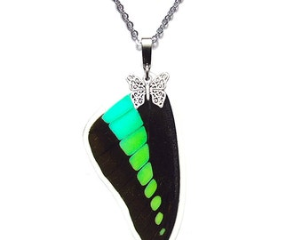 Real Butterfly Wing Pendant / Necklace (Graphium Sarpedon Forewing - N039)