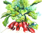 "Watercolor Painting, Radishes, Watercolor Still Life Painting, 9""x12"""