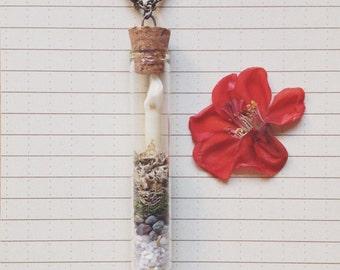 Terrarium Necklace : Bone, Natural Science - Mammal Incisor