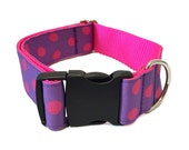 """Purple and Pink Polka Dot Wide Dog Collar Buckle or Martingale 1.5"""""""