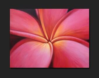 Plumeria Frangipani Modern painting by Robyn Joy Art 40x30