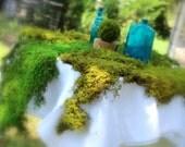 Moss runners-12 Square feet BULK-Preserved Sheet Moss-Delicate Fern Moss-6 feet by 2 feet-Bonsai-Wedding Decor-Woodland Party