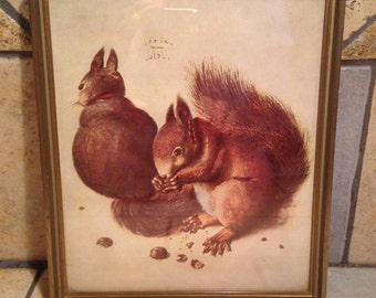 1912 Two Young Squirrels Framed Antique Illustration