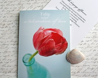 tulip Language of Flowers note card  // Nature Floral Plant Life Botanical // Prairie Garden