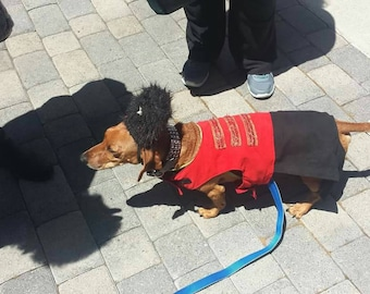 Russian  costumes for Hollywood  Movie Wiener Dog Internationals As seen on New Day 5