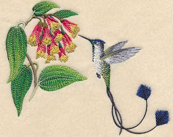 Marvelous Spatuletail Hummingbird  - Embroidered Terry Kitchen Towel Bathroom Hand Towel