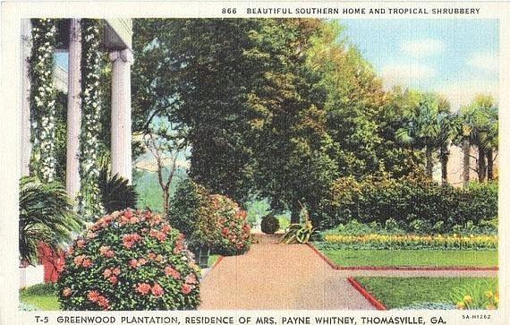 Items similar to Vintage Georgia Postcard - Tropical ...