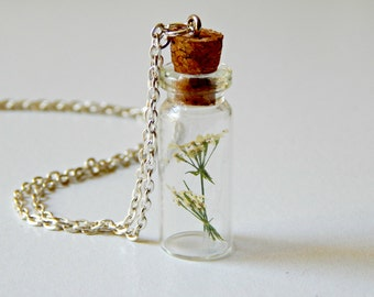 Dried Flower in a Bottle Necklace Silver Chain Queen Anne Lace